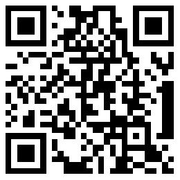 查看手机版官网